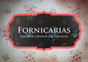 """Portada de Fornicarias: una introducción. Leyenda """"Fornicarias, Especial de Literatura Gay Tucumana"""" sobre un empapelado."""